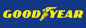 Vietti Gomme di Vietti Mario & C. S.a.s. - Logo Good Year